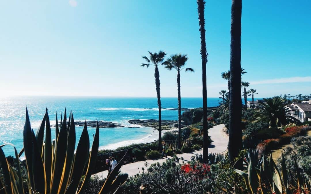 What Does Los Angeles Have To Offer?